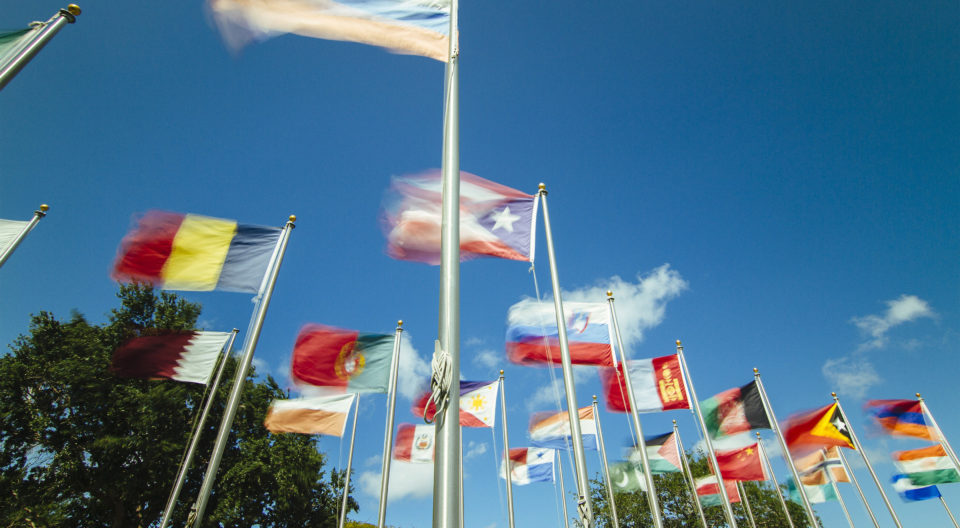 Lynn University campus flags blowing in the wind.