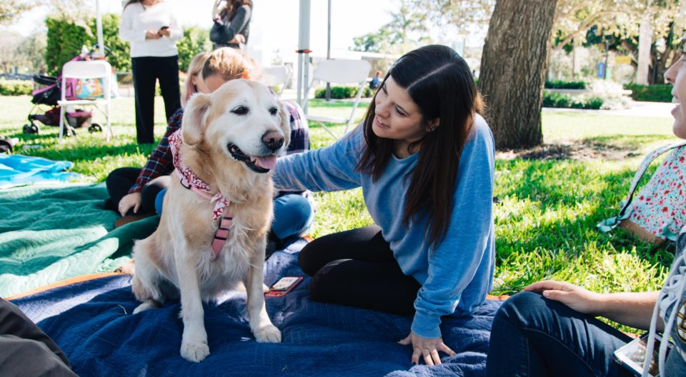 A therapy dog visits with a Lynn female student